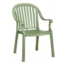 Colombo Dining Armchair Sage Green